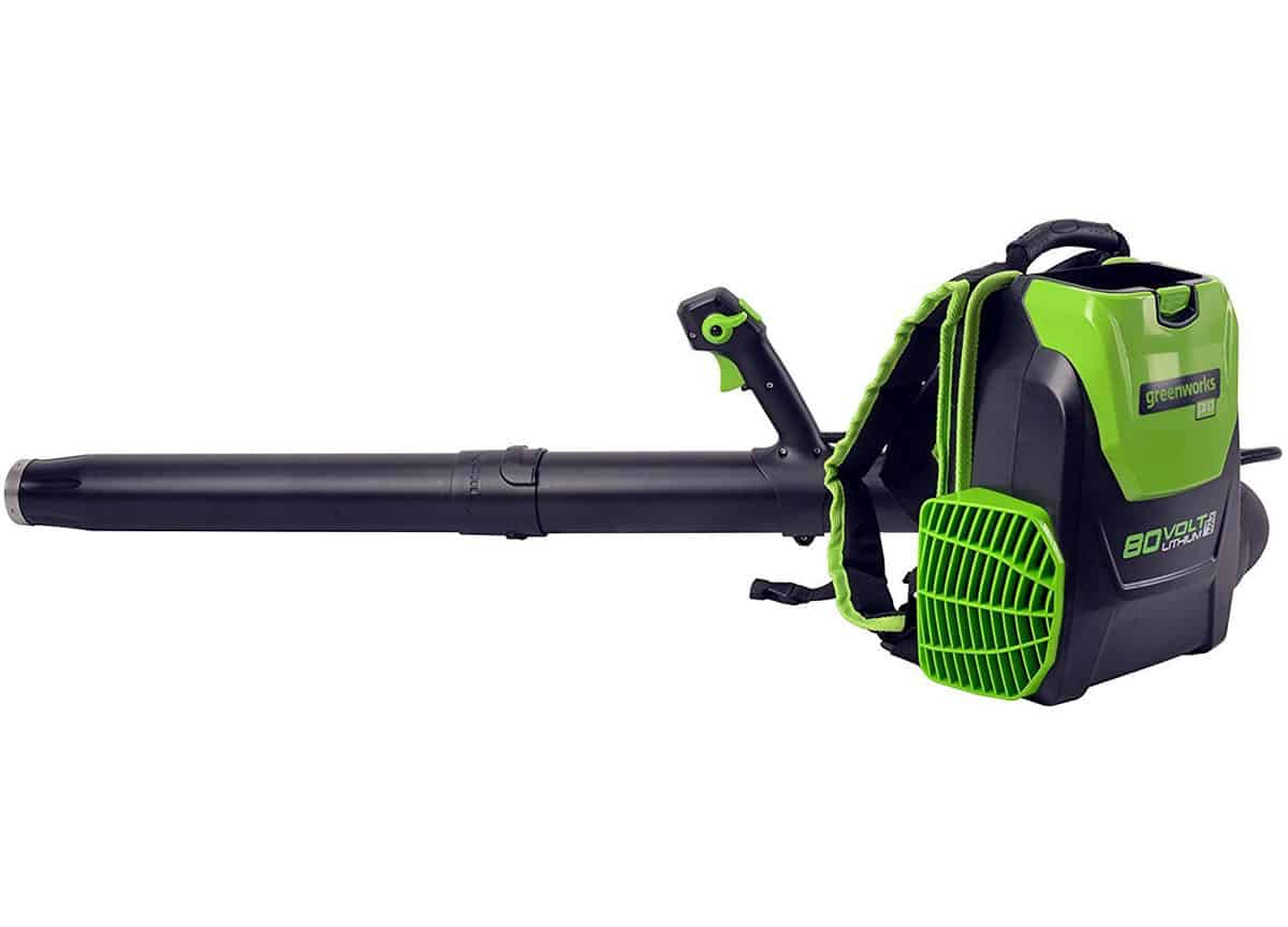 Picture 1 of the Greenworks Pro BPB80L2510