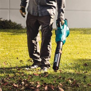 Picture of a man clearing leaves with a battery operated blower