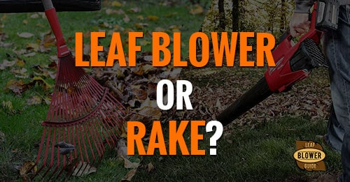 blower or rake featured image
