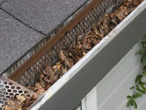 Picture of a gutter full of leaves