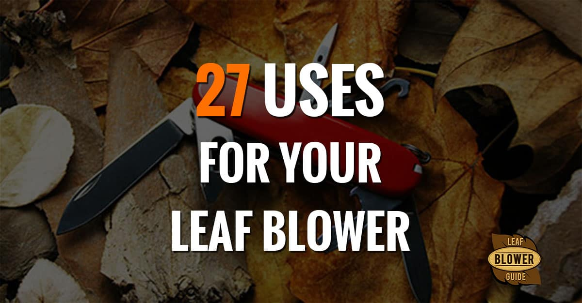 20 Unique Ways To Use A Leaf Blower And 4 Odd Questions