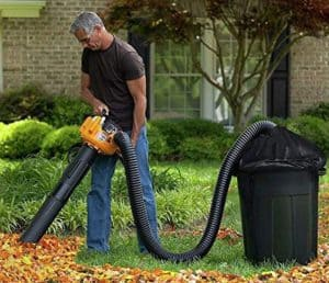 Picture of a man vacuuming leaves into a trash can