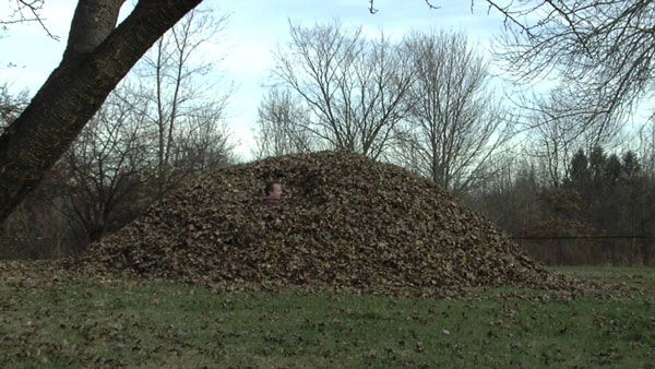 man inside a big pile of leaves