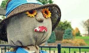 Picture of a head of a scarecrow