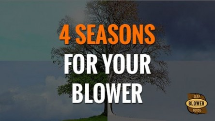 A 4-Season Guide to Leaf Blowers
