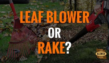 Should You Use a Leaf Blower Or a Rake?