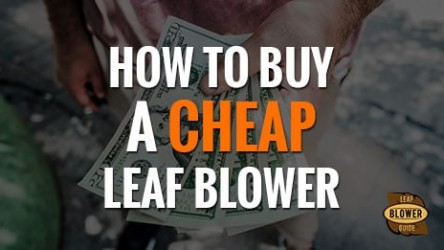 How to Get a Cheap Leaf Blower – 5 Tips For Success